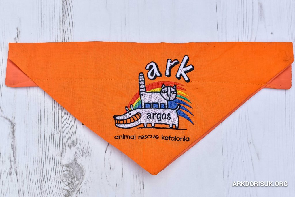ARK Bandanas - Orange
