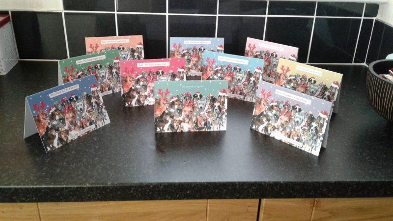 Animal Rescue Kefalonia Christmas Cards 1