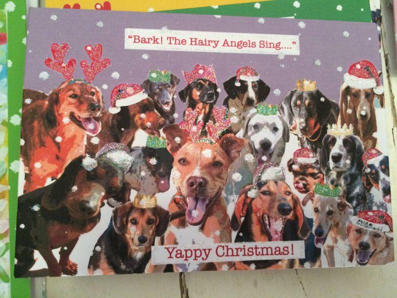 Animal Rescue Kefalonia Christmas Cards 4