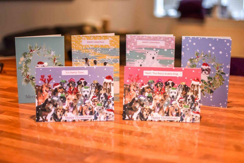 Animal Rescue Kefalonia Christmas Cards 6