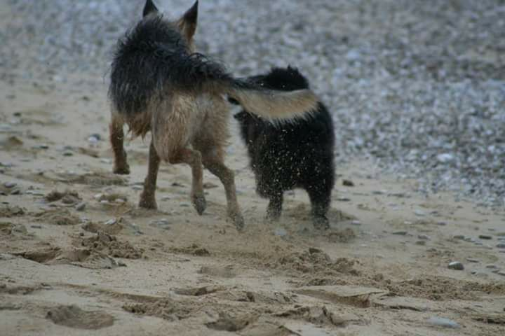 Bobby running with his sister!