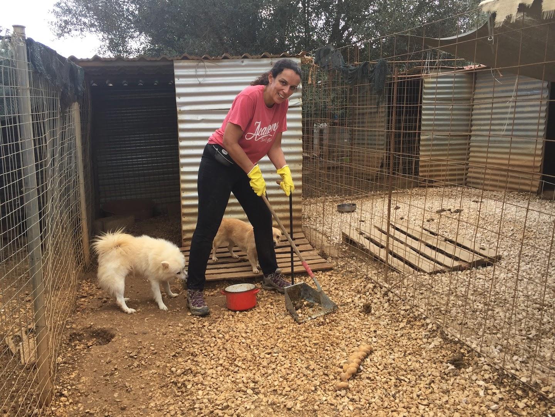 Cleaning poop - one of the main volunteer duties!