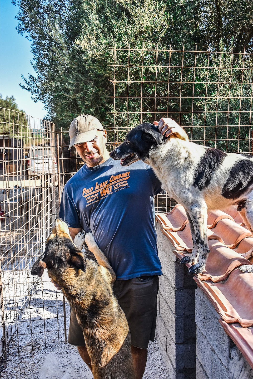 Making friends at Animal Rescue Kefalonia