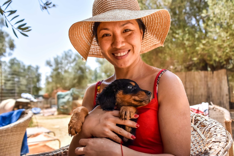 Volunteering at Animal Rescue Kefalonia